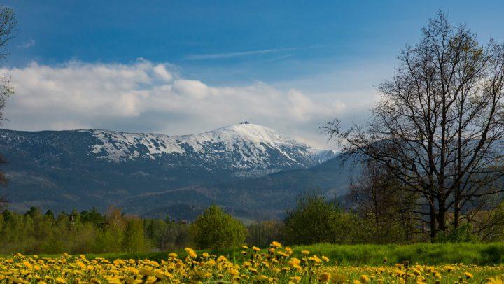 """Warsztaty zielarskie """"Powrót do natury w pięknej scenerii Karkonoszy"""" 23-25 kwietnia 2021 r."""