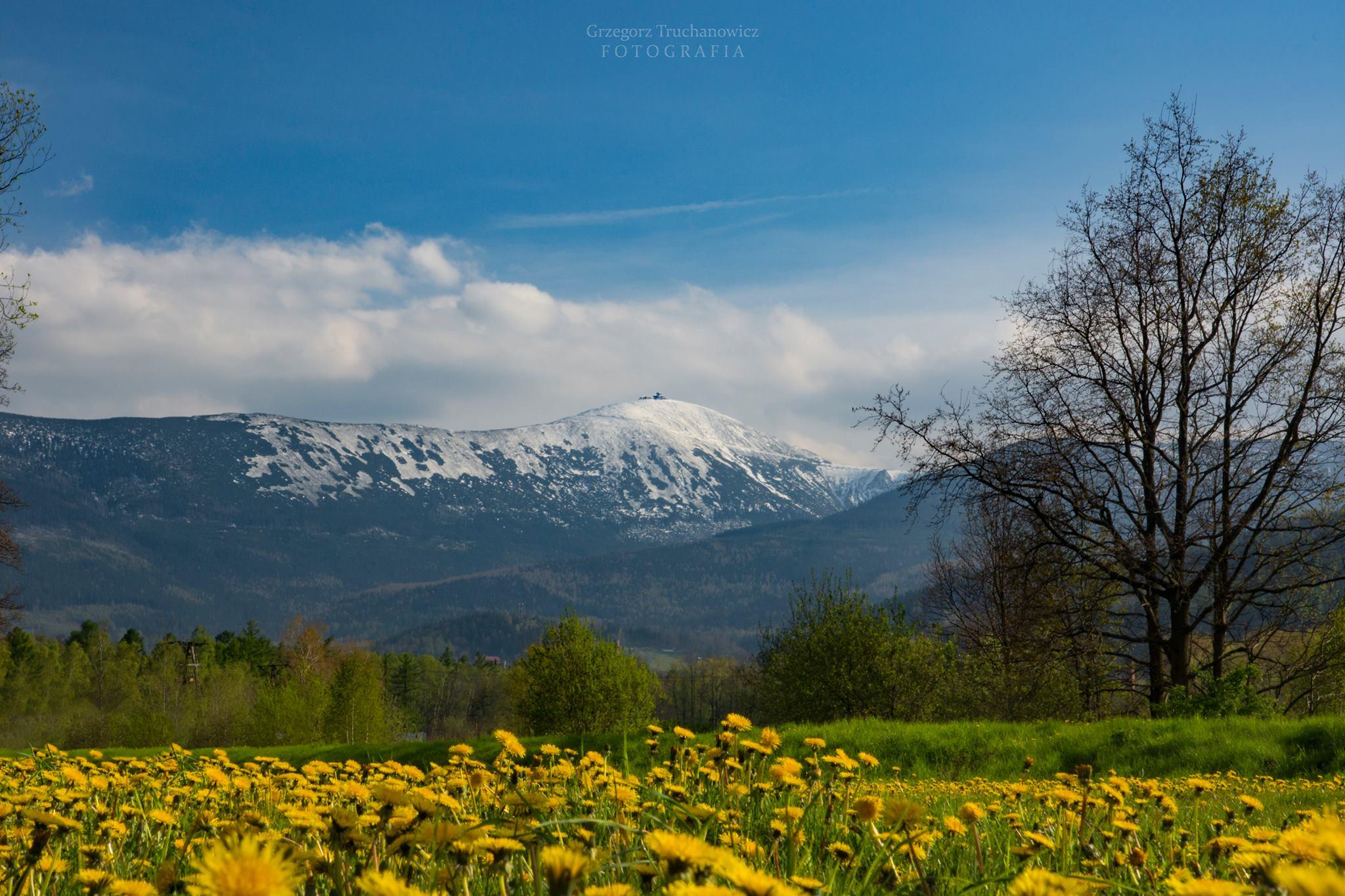 """Warsztaty zielarskie """"Powrót do natury w pięknej scenerii Karkonoszy"""" 22-24 maja 2020"""